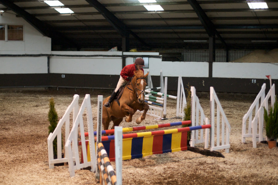 stage obstacle junior linguistique Sligo Horsaway