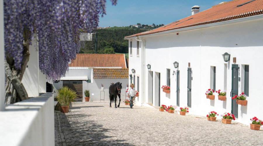 Quinta stage séjour Portugal