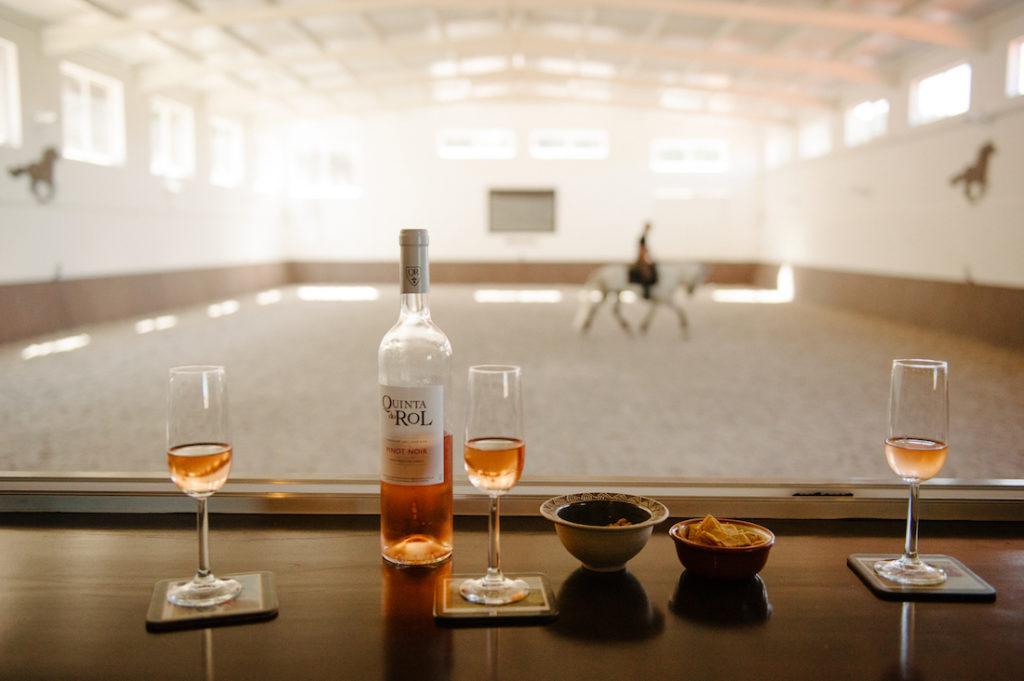 Vin et dressage sur lusitanien au Portugal Horsaway