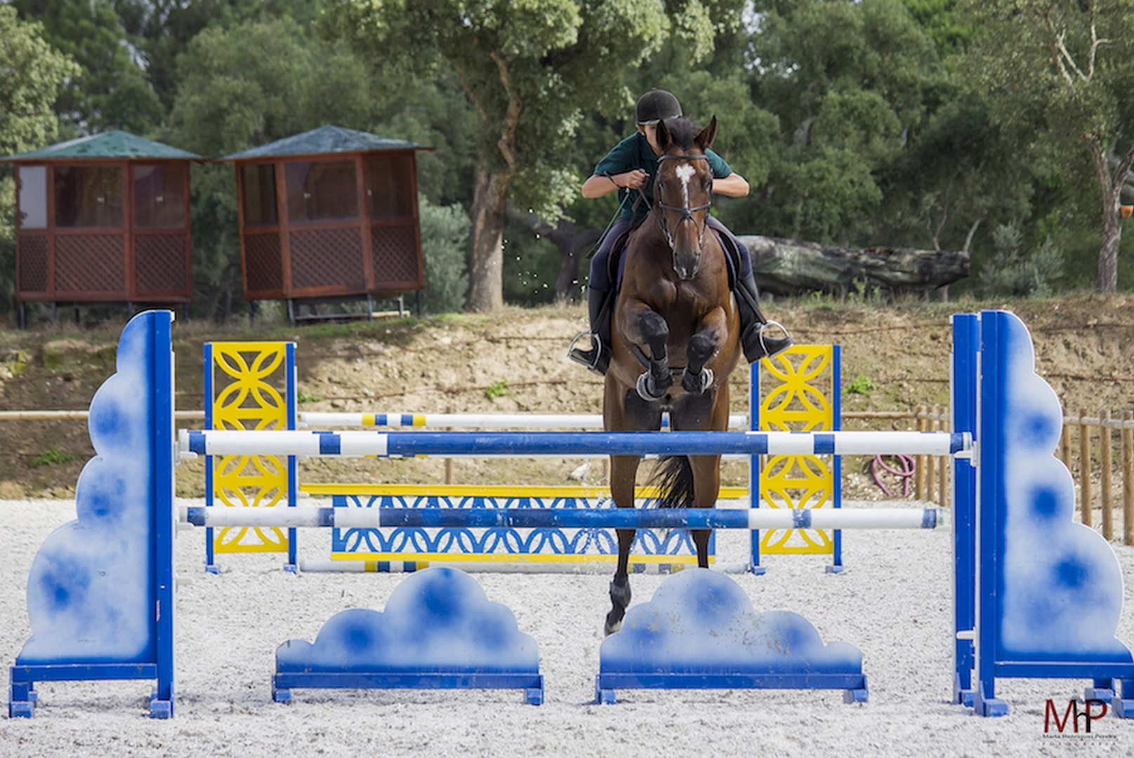 jumping équitation obstacle Portugal