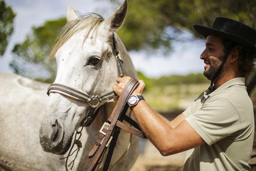 cheval-lusitanien-randonnée