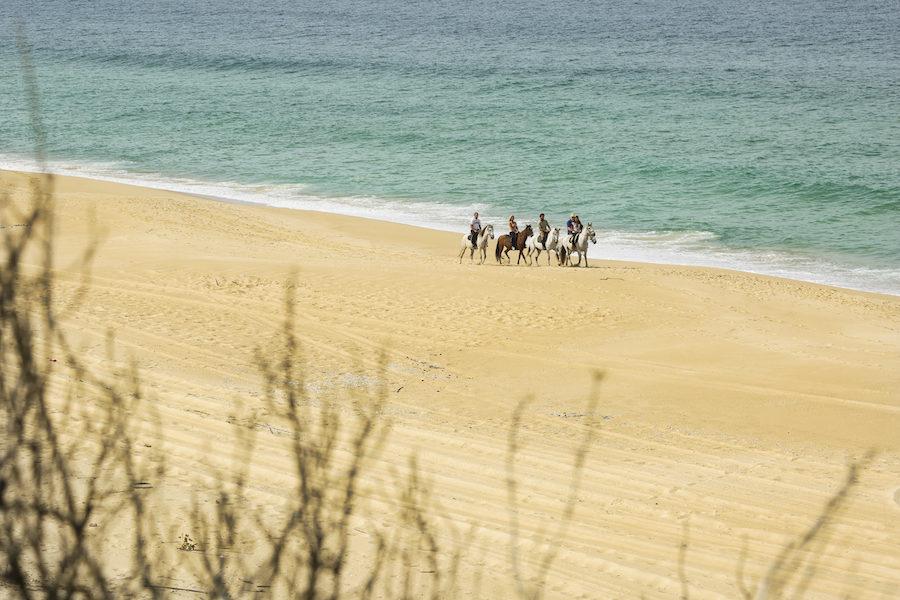 cavaliers randonnée plage Portugal