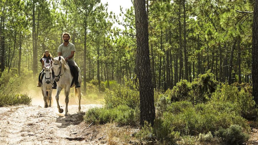 randonnée cheval forêt Portugal