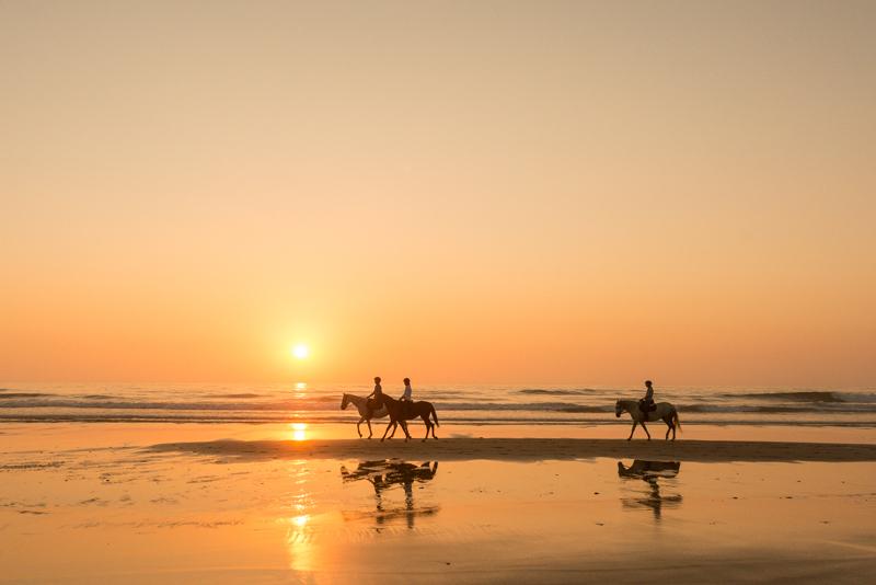 coucher de soleil cheval plage