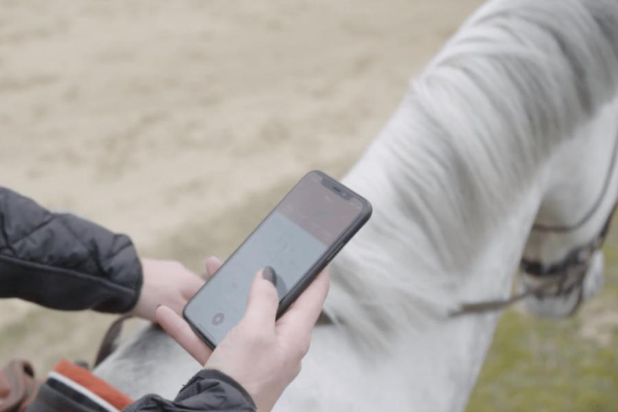 Wiki-horse article startups équitation