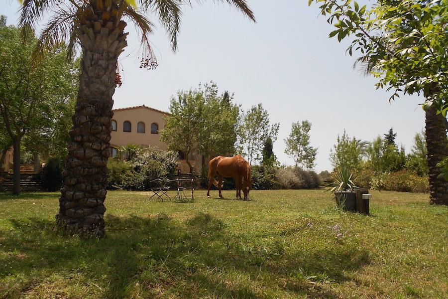 chambre d'hôtes centre équestre Catalogne