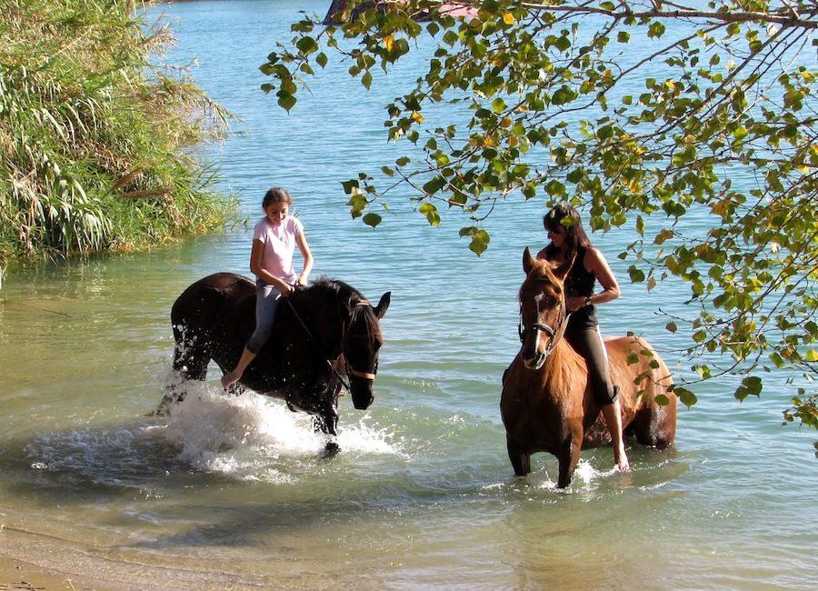 baignade chevaux rivière Catalogne randonnée