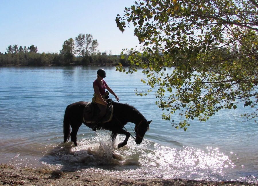 randonnée équestre cheval rivière Catalogne