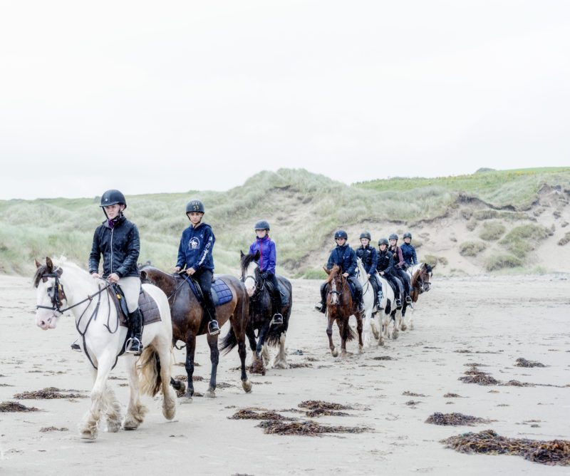 chevaux plage Donegal Irlande