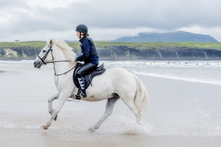 Galop plage Donegal cheval