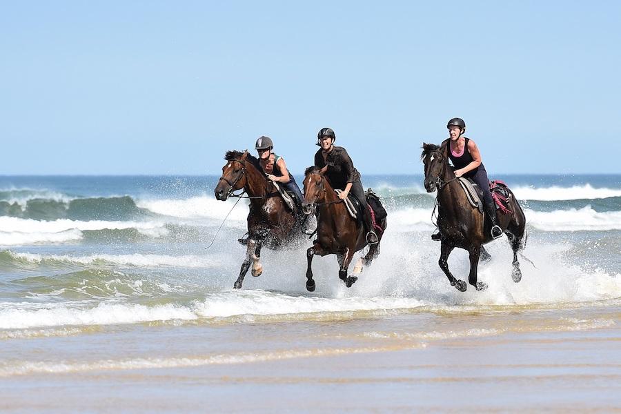 galop plage Landes stage équitation randonnée