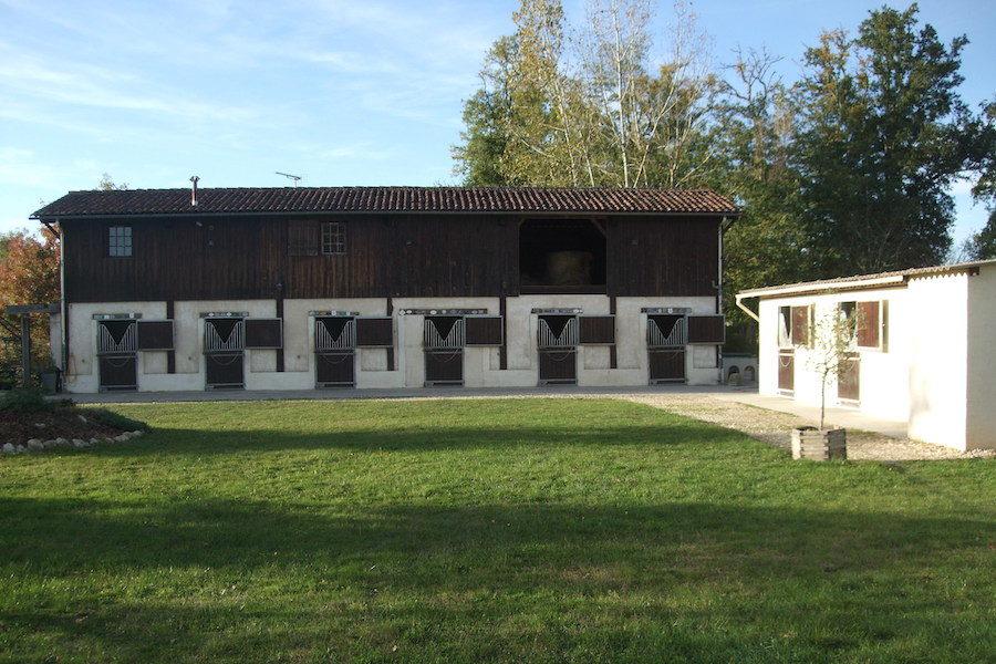 écurie bordelais stage anglais équitation