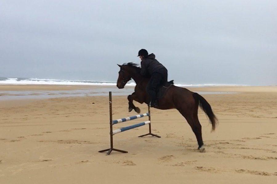 saut d'obstacles plage Landes équitation