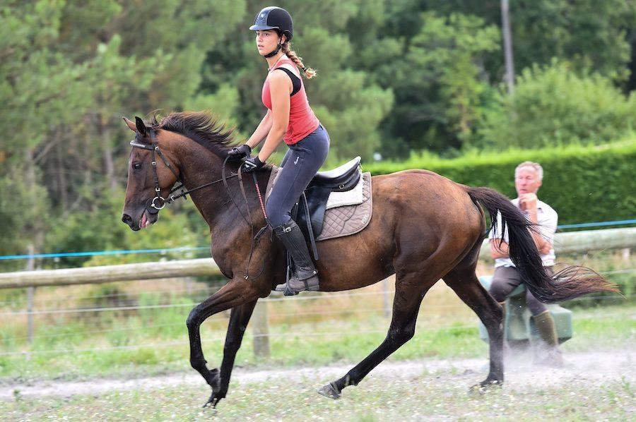 stage équitation Landes