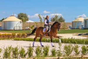 dressage yourte Portugal zen