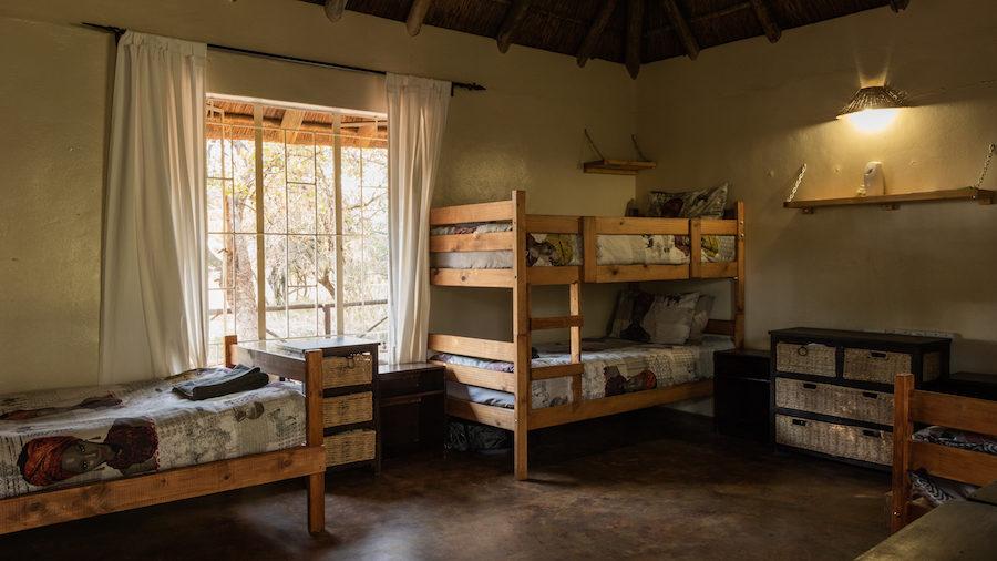 chambre afrique du sud safari kruger