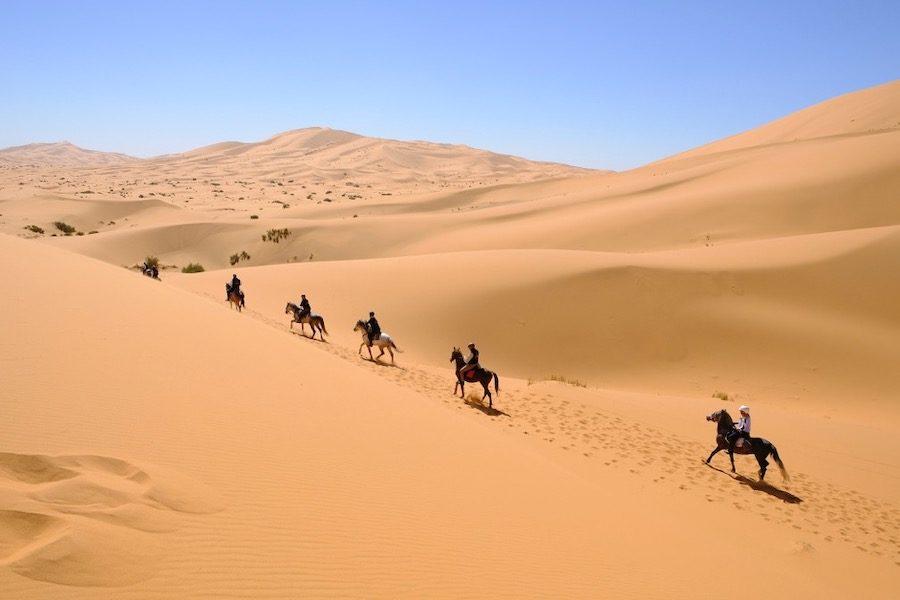 cheval Gallop endurance raid Morocco