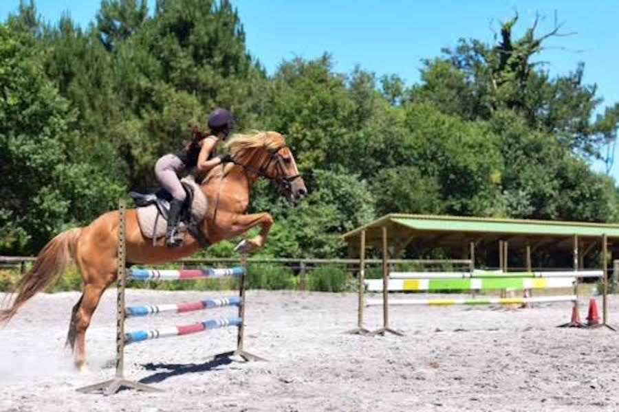 stage équitation jumping Landes